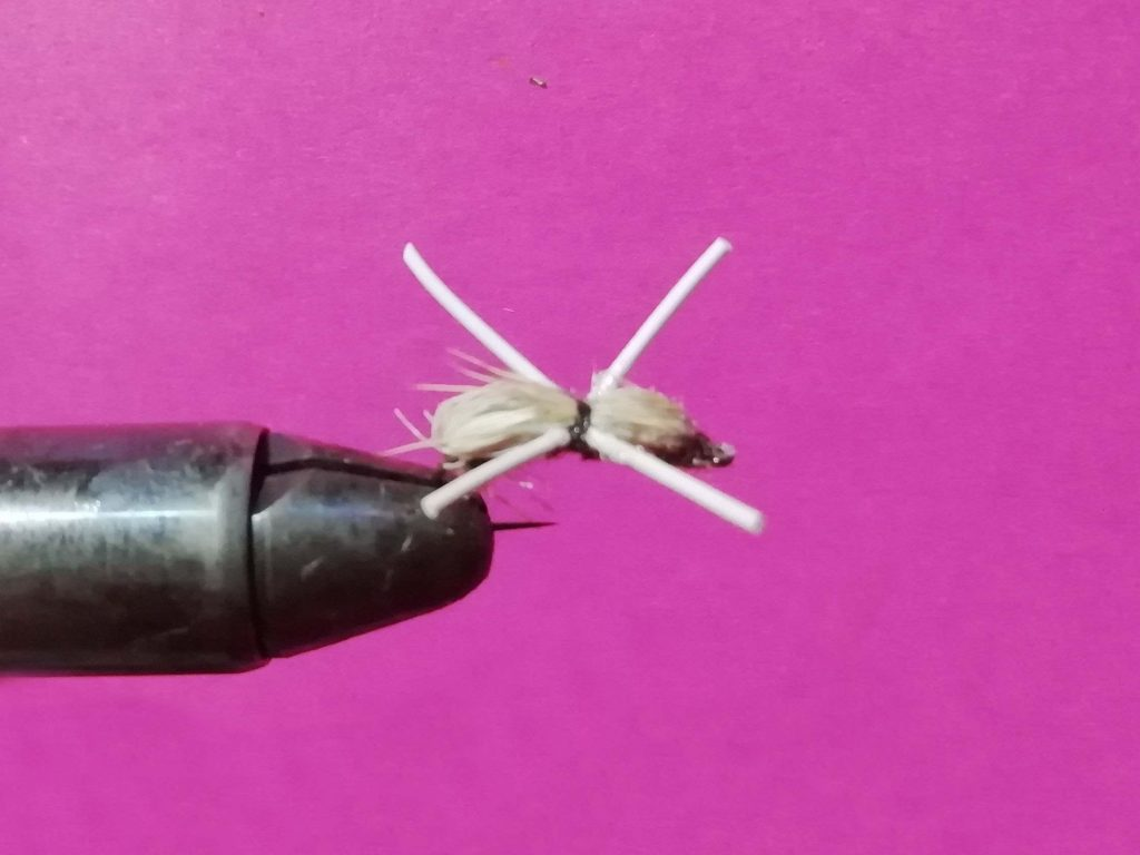The white beetle: another most productive patterns for this river.